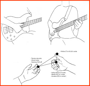Posizioni-dita-basso-slap-basslab-bologna
